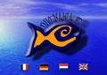 Divemania - Centre de plongée Argelès sur Mer